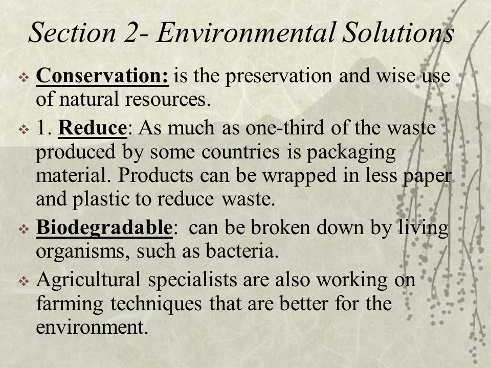 conservation problems and solutions