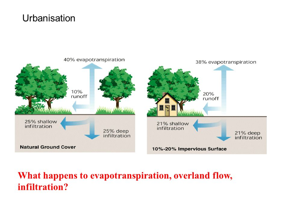 Urbanisation What happens to evapotranspiration, overland flow, infiltration