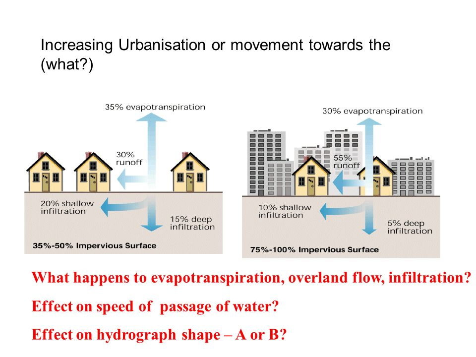 Increasing Urbanisation or movement towards the (what )