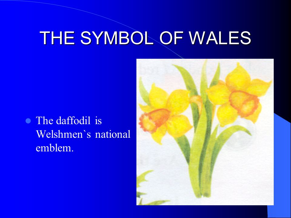 British Floral Symbols Ppt Video Online Download