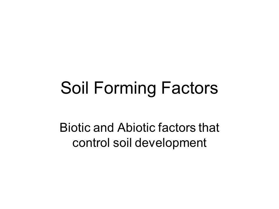 Biotic and Abiotic factors that control soil development