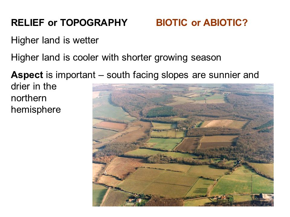 RELIEF or TOPOGRAPHY BIOTIC or ABIOTIC