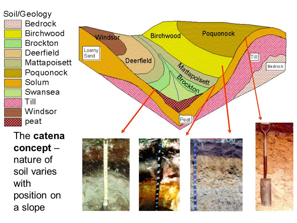 The catena concept – nature of soil varies with position on a slope