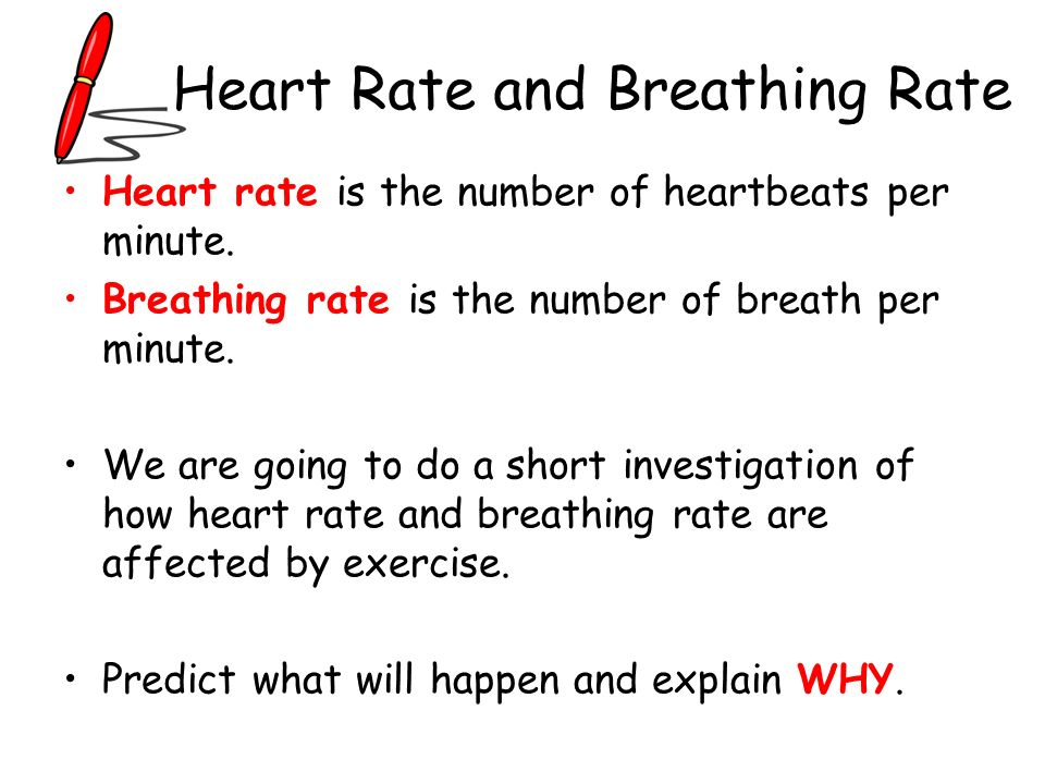 Heart Rate and Breathing Rate