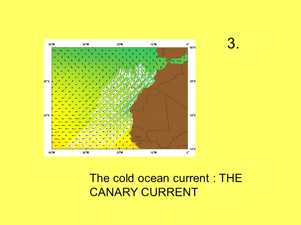 3. The cold ocean current : THE CANARY CURRENT