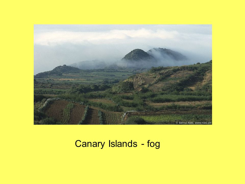 Canary Islands - fog