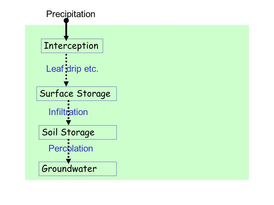 Precipitation Interception. Leaf drip etc. Surface Storage. Infiltration. Soil Storage. Percolation.