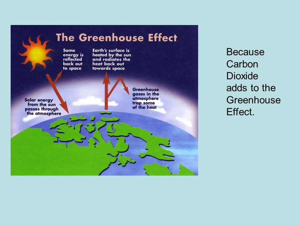 Because Carbon Dioxide adds to the Greenhouse Effect.