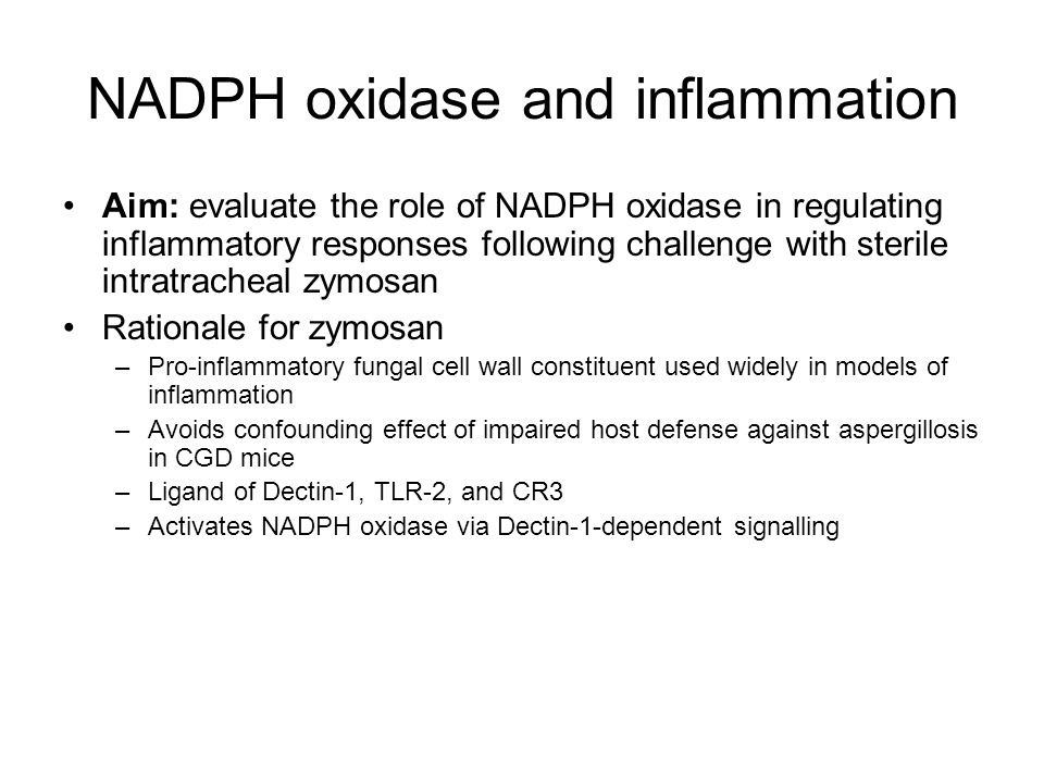 NADPH oxidase and inflammation