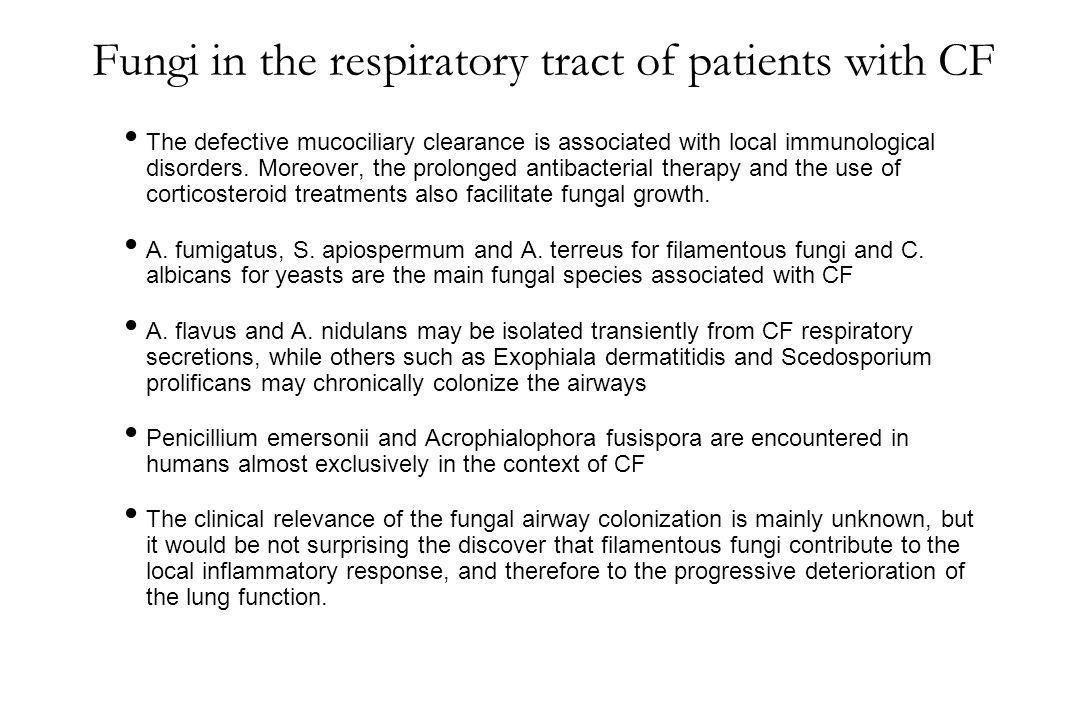 Fungi in the respiratory tract of patients with CF
