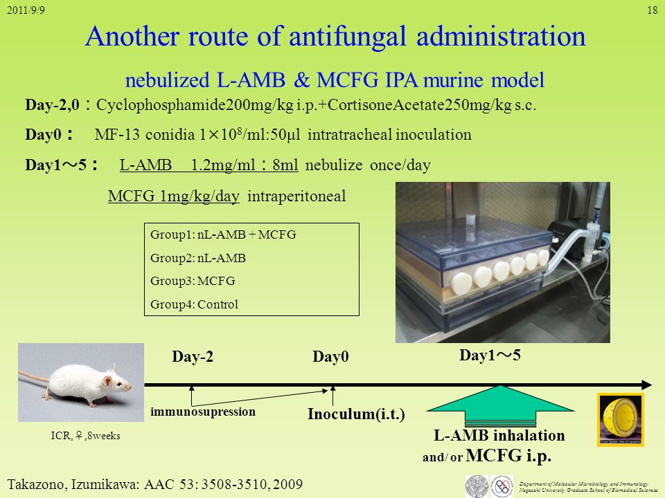 Another route of antifungal administration