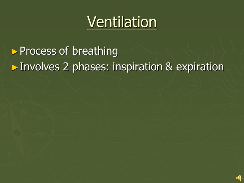 Ventilation Process of breathing