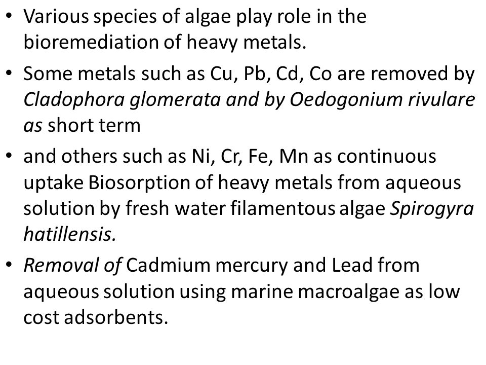 Bioremediation of Heavy Metals by Plants and Algae - ppt