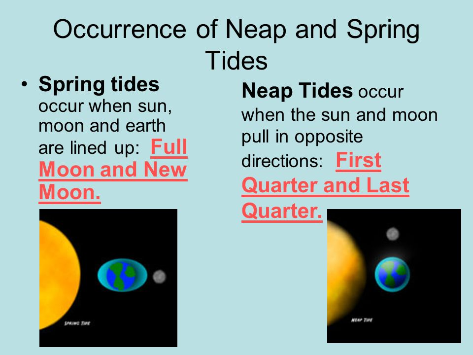 Occurrence of Neap and Spring Tides