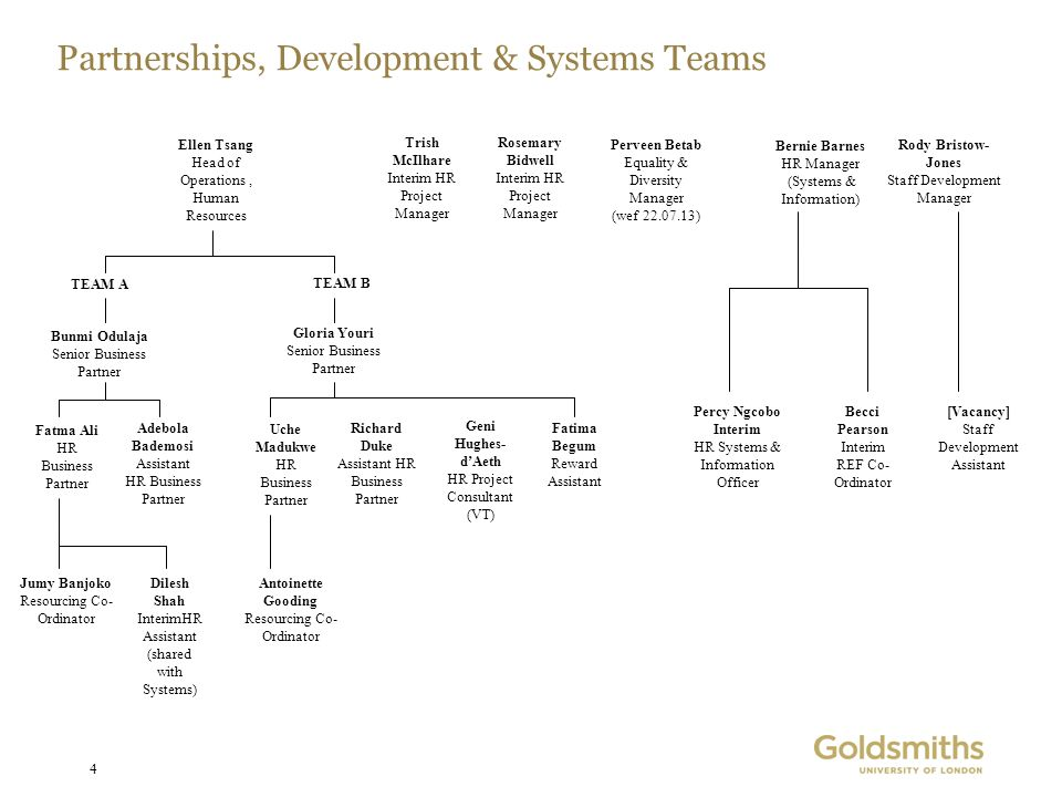 Partnerships, Development & Systems Teams