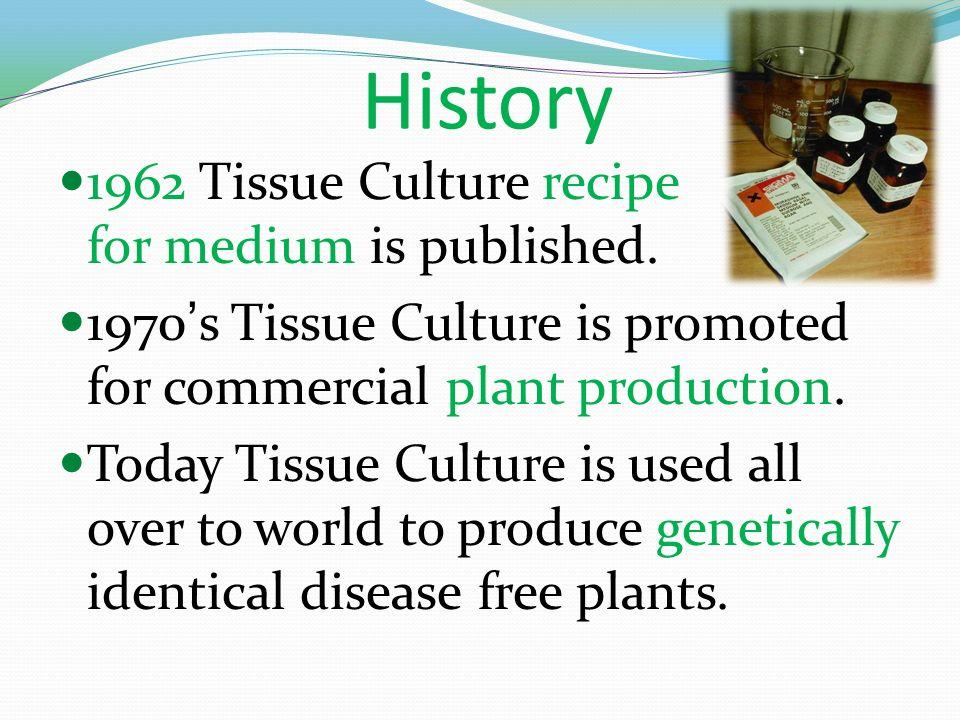 Ppt on tissue culture class 10 cbse text book ncert.