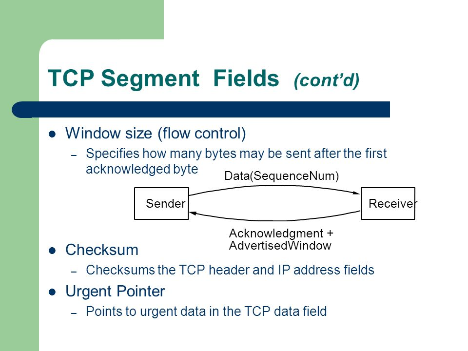 TCP Segment Fields (cont'd)