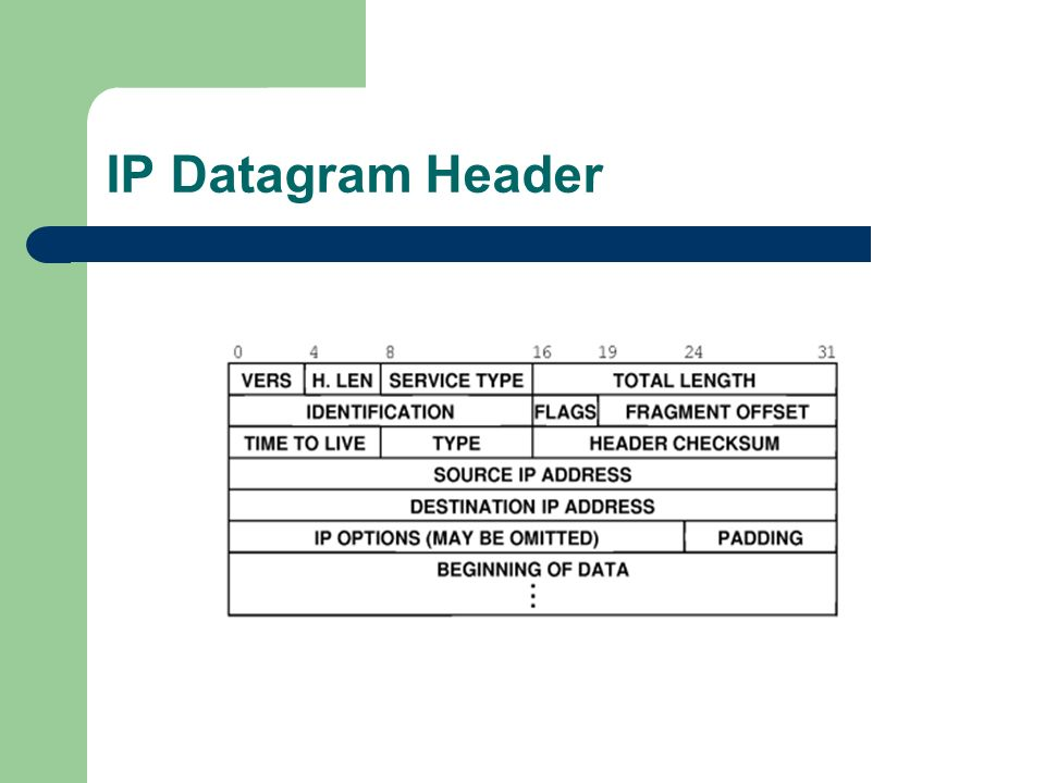 IP Datagram Header
