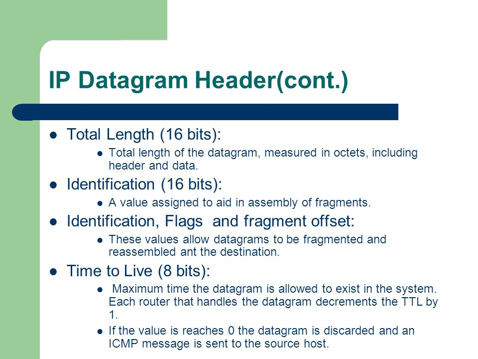 IP Datagram Header(cont.)