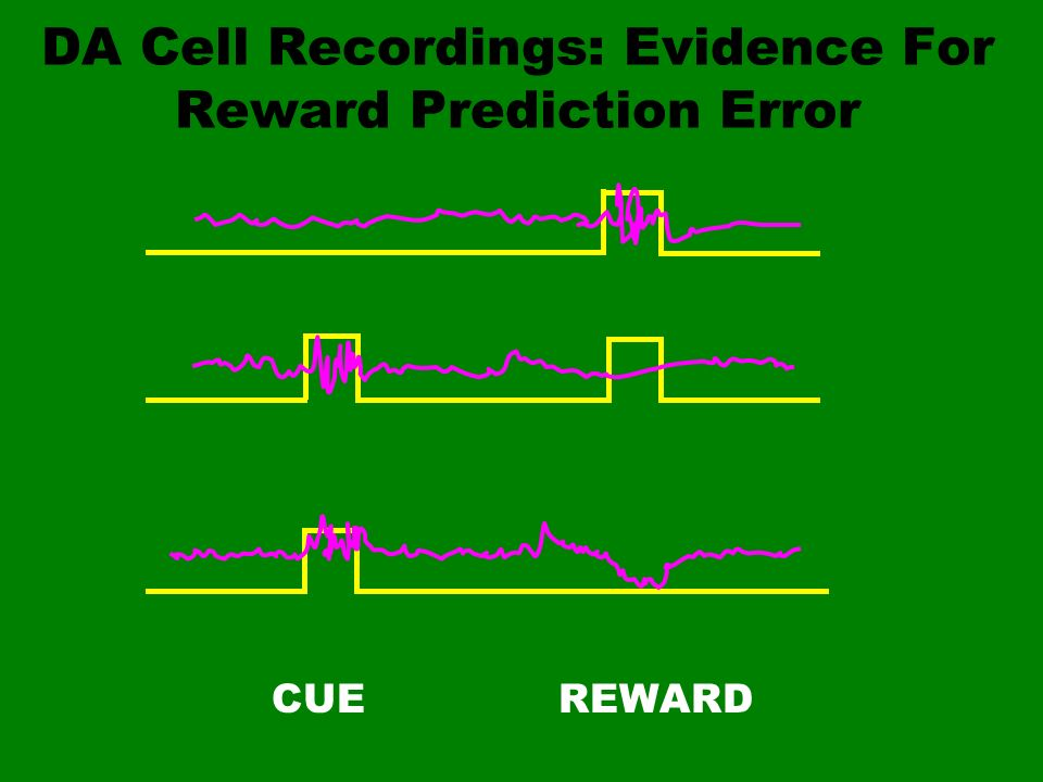 DA Cell Recordings: Evidence For Reward Prediction Error