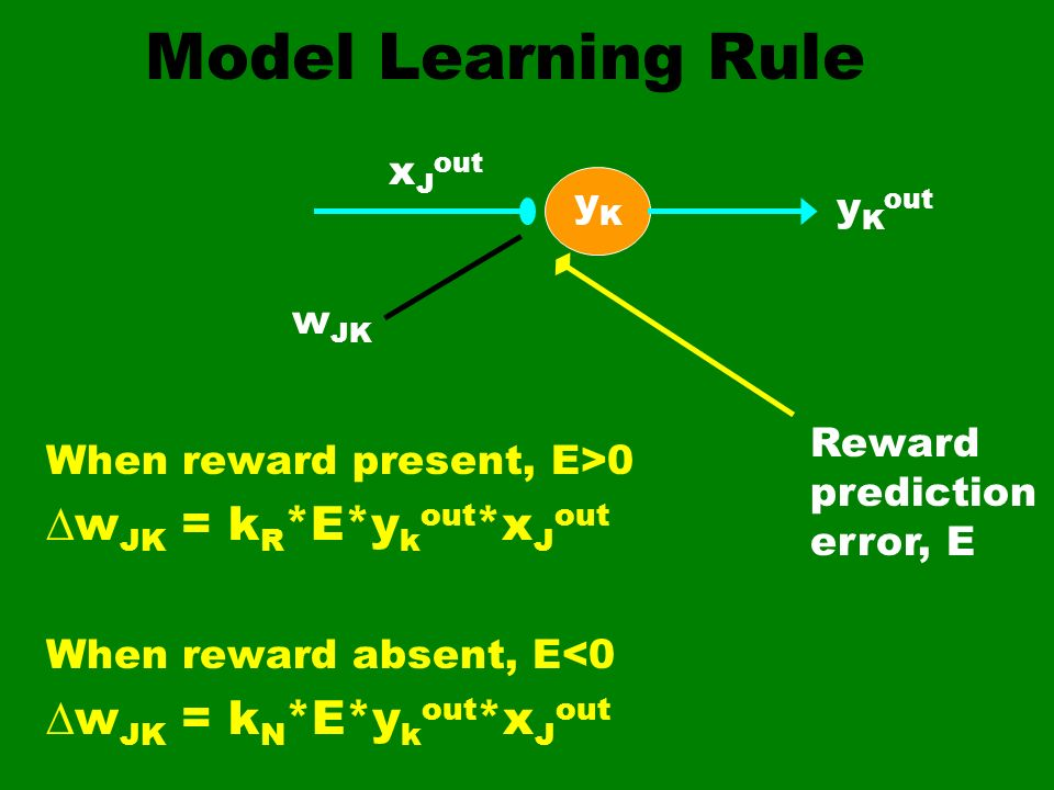 Model Learning Rule wJK = kR*E*ykout*xJout wJK = kN*E*ykout*xJout