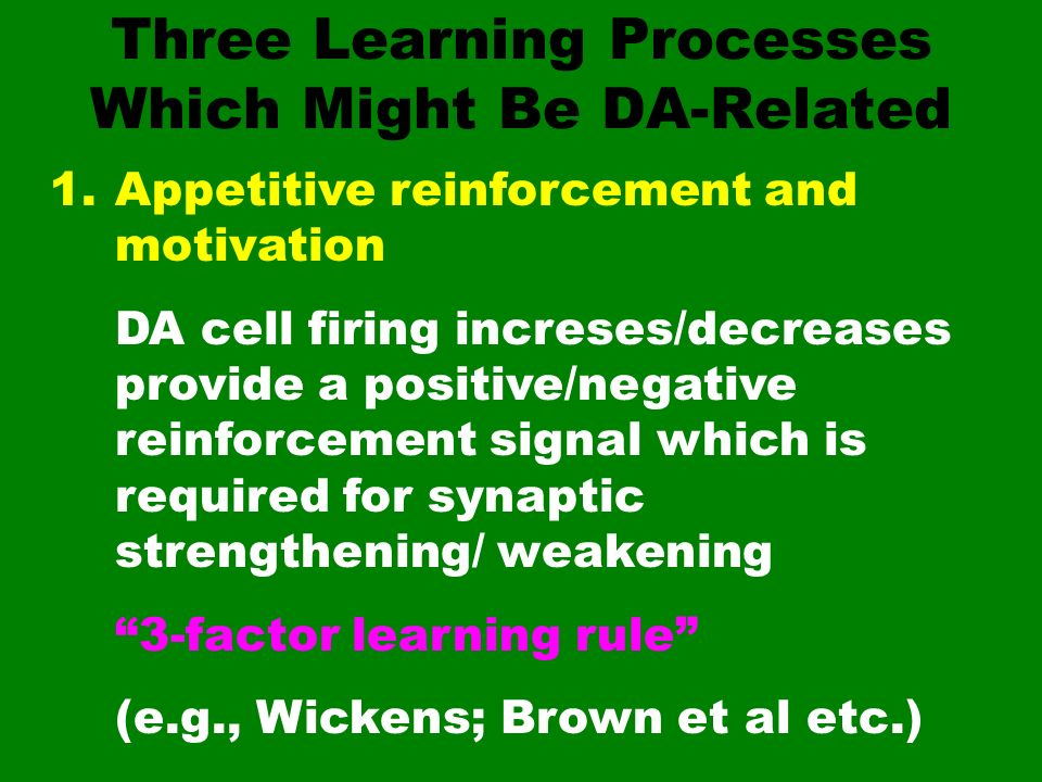 Three Learning Processes Which Might Be DA-Related
