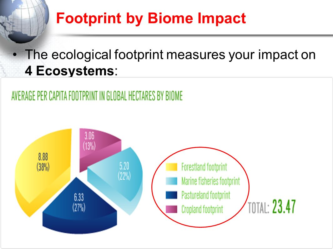 Footprint by Biome Impact
