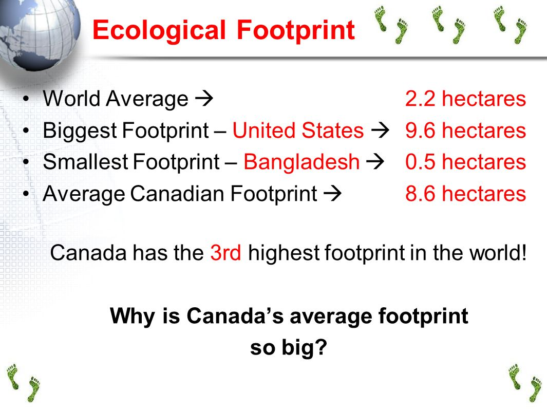 Why is Canada's average footprint