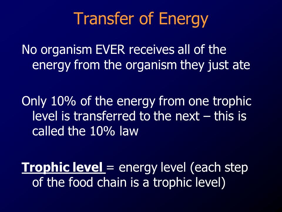 Transfer of Energy No organism EVER receives all of the energy from the organism they just ate.