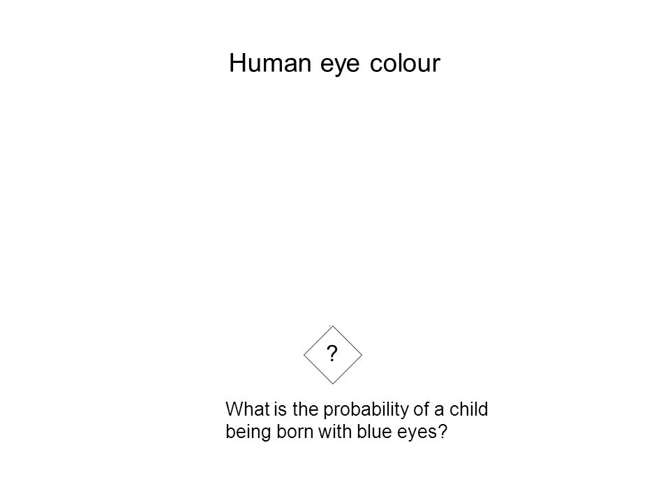 Human eye colour What is the probability of a child being born with blue eyes