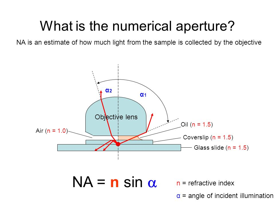What is the numerical aperture