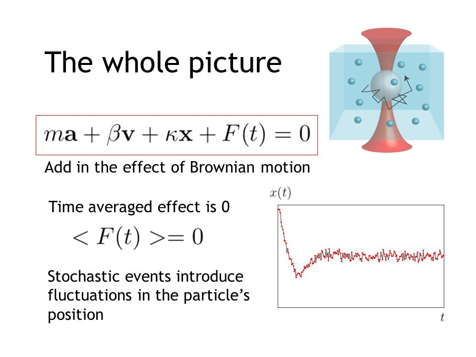 The whole picture Add in the effect of Brownian motion