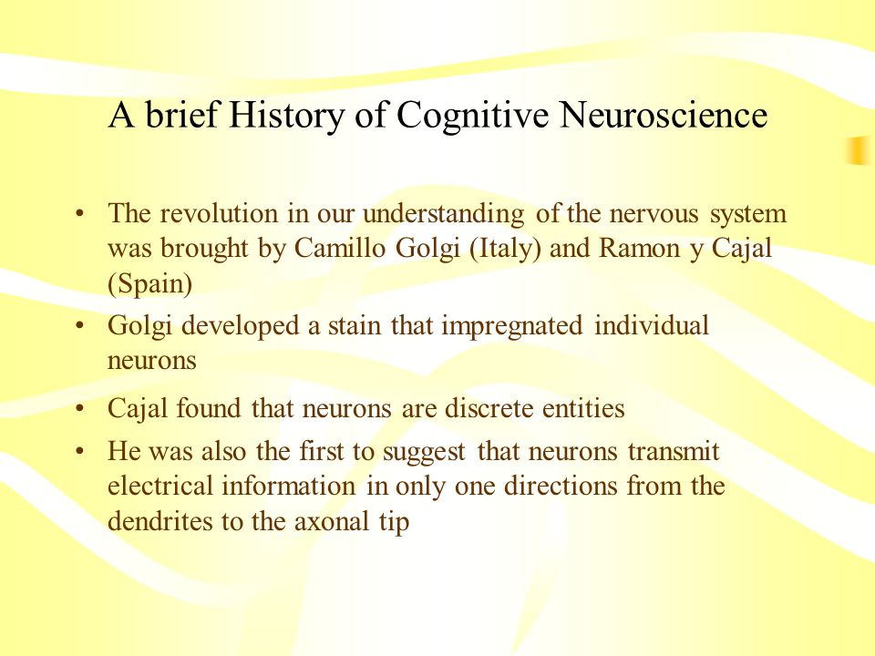 A brief History of Cognitive Neuroscience