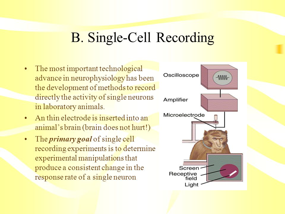 B. Single-Cell Recording