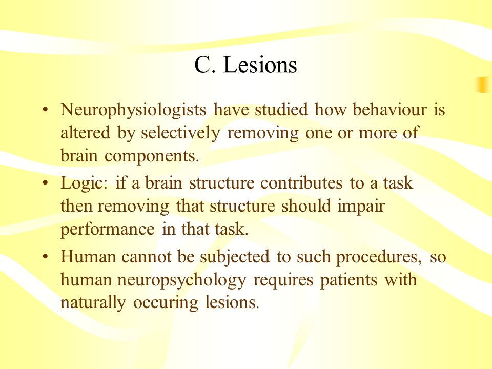 C. Lesions Neurophysiologists have studied how behaviour is altered by selectively removing one or more of brain components.