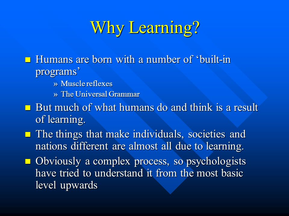 Why Learning Humans are born with a number of 'built-in programs'