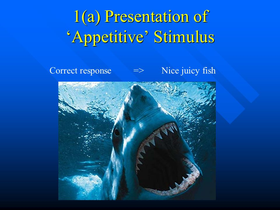 1(a) Presentation of 'Appetitive' Stimulus