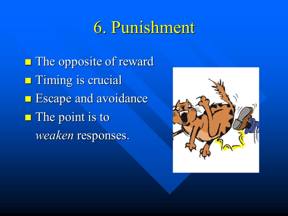 6. Punishment The opposite of reward Timing is crucial