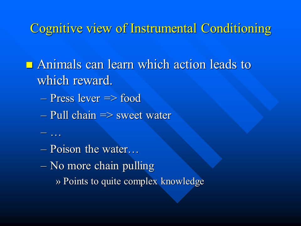 Cognitive view of Instrumental Conditioning