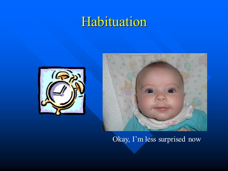 Habituation Okay, I'm less surprised now