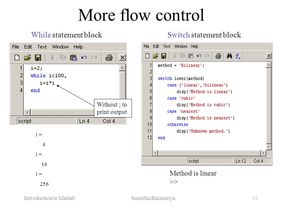 More flow control While statement block Switch statement block