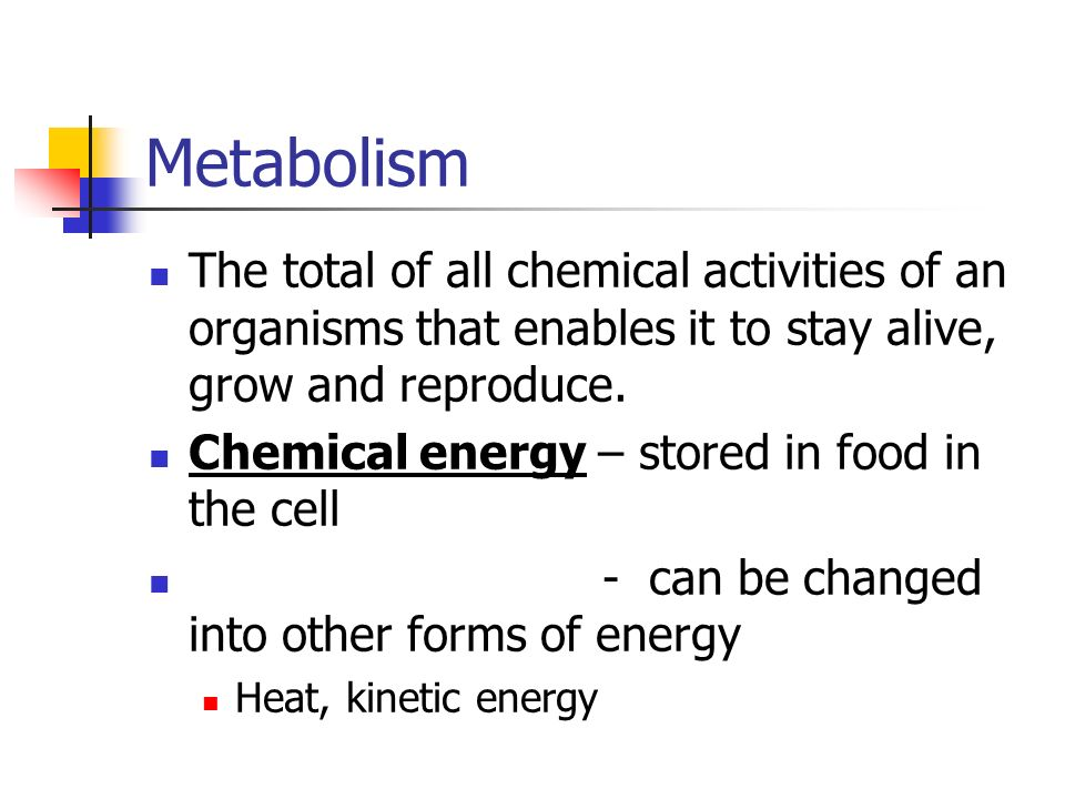 Metabolism The total of all chemical activities of an organisms that enables it to stay alive, grow and reproduce.