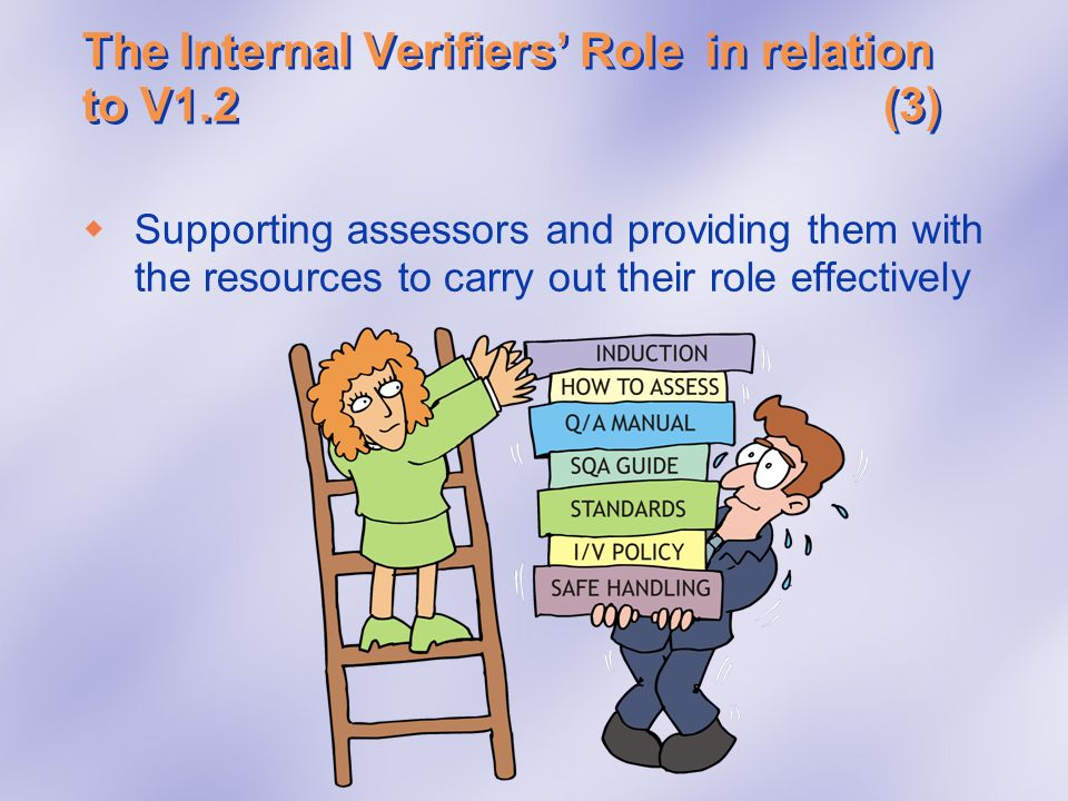 The Internal Verifiers' Role in relation to V1.2 (3)