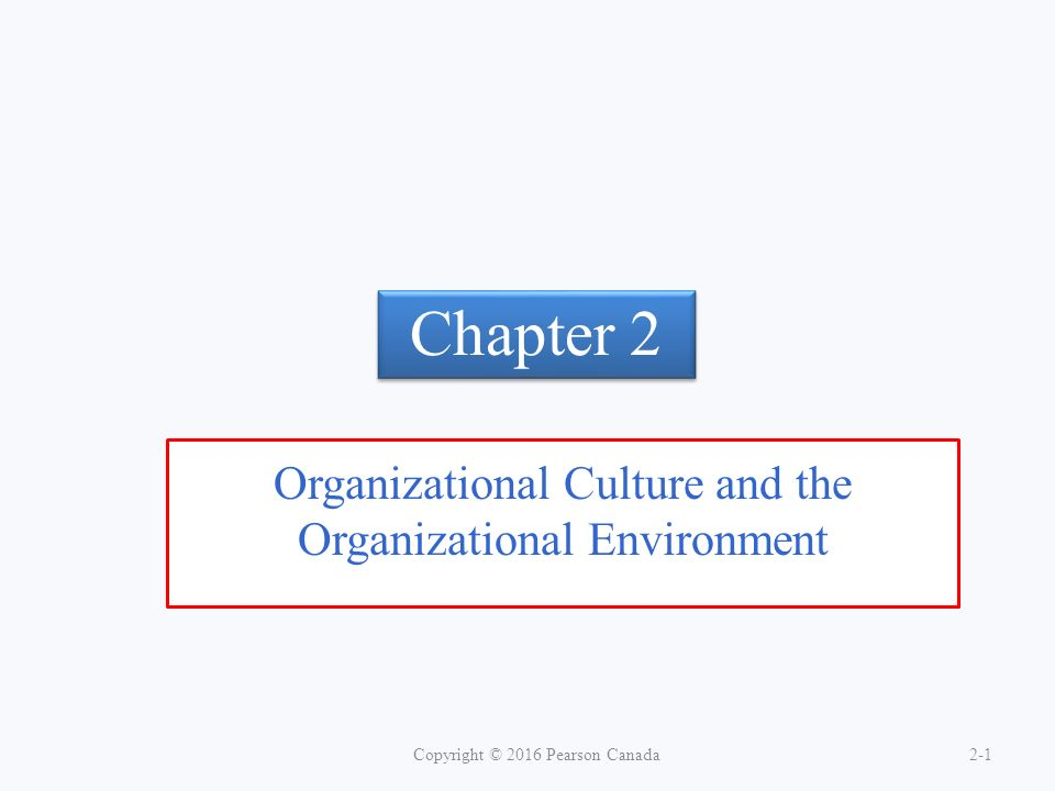 Organizational Culture and the Organizational Environment