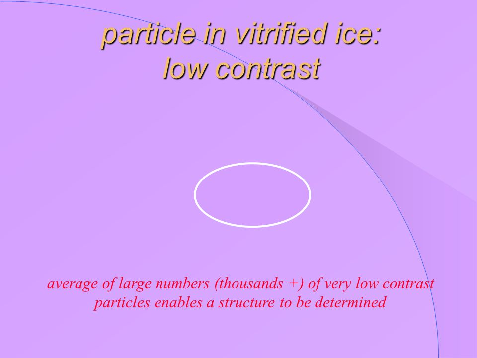 particle in vitrified ice: low contrast
