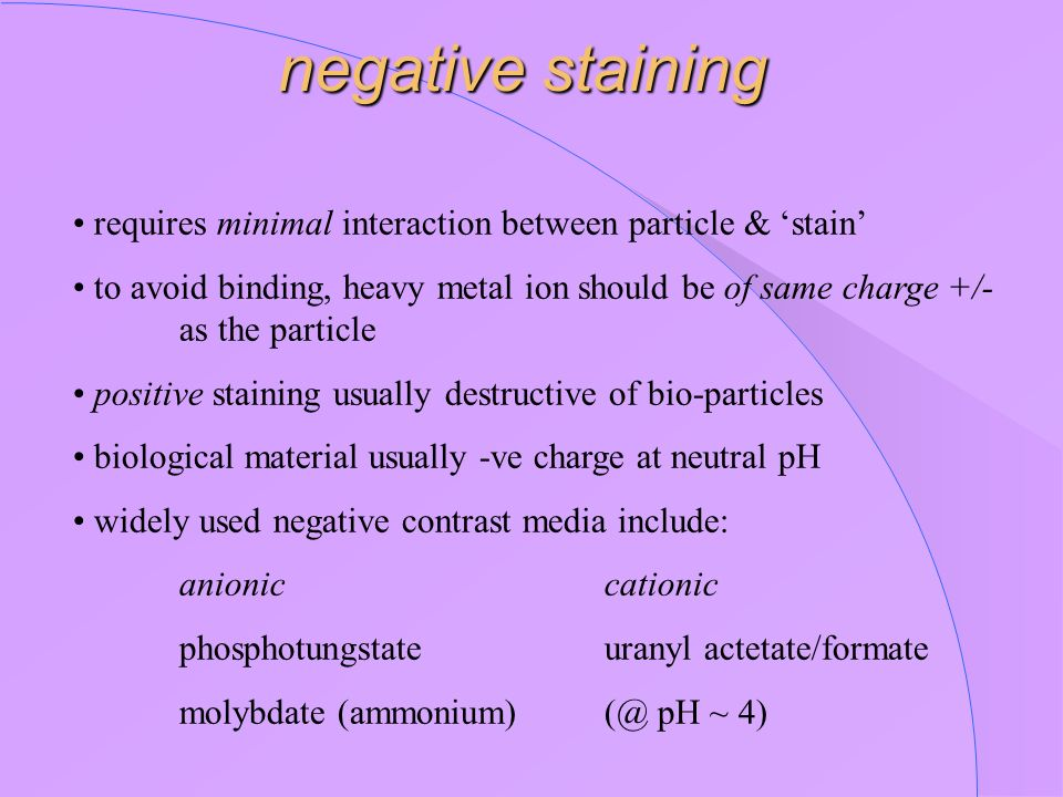 negative staining • requires minimal interaction between particle & 'stain'