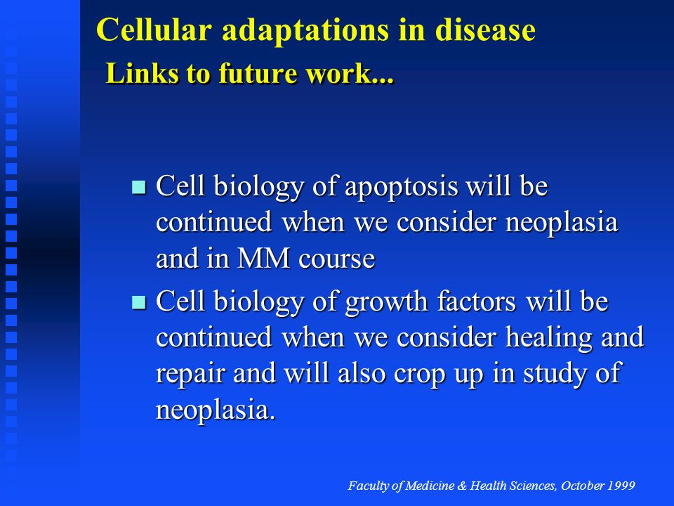 Links to future work... Cell biology of apoptosis will be continued when we consider neoplasia and in MM course.