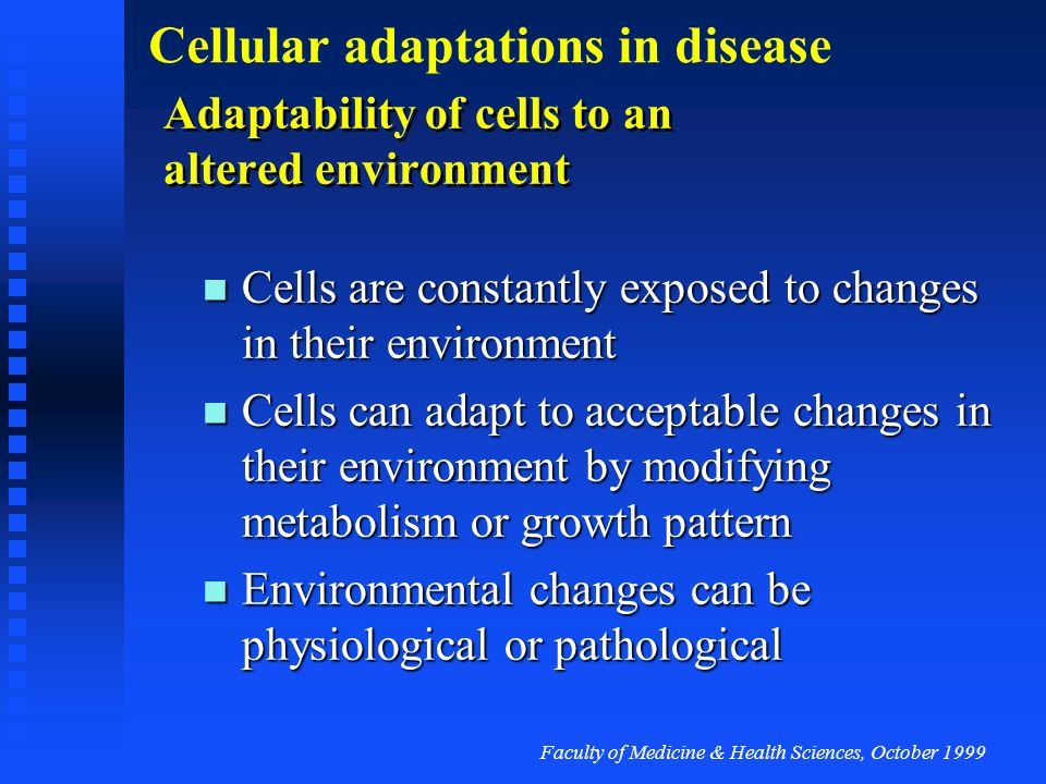 Adaptability of cells to an altered environment