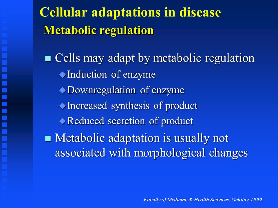 Cells may adapt by metabolic regulation