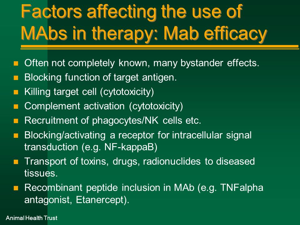 Factors affecting the use of MAbs in therapy: Mab efficacy